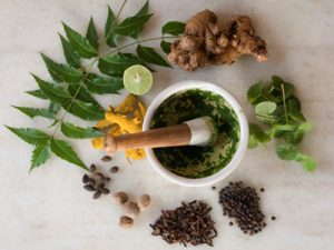 An array of Herbs and spices with a motar and pestle.